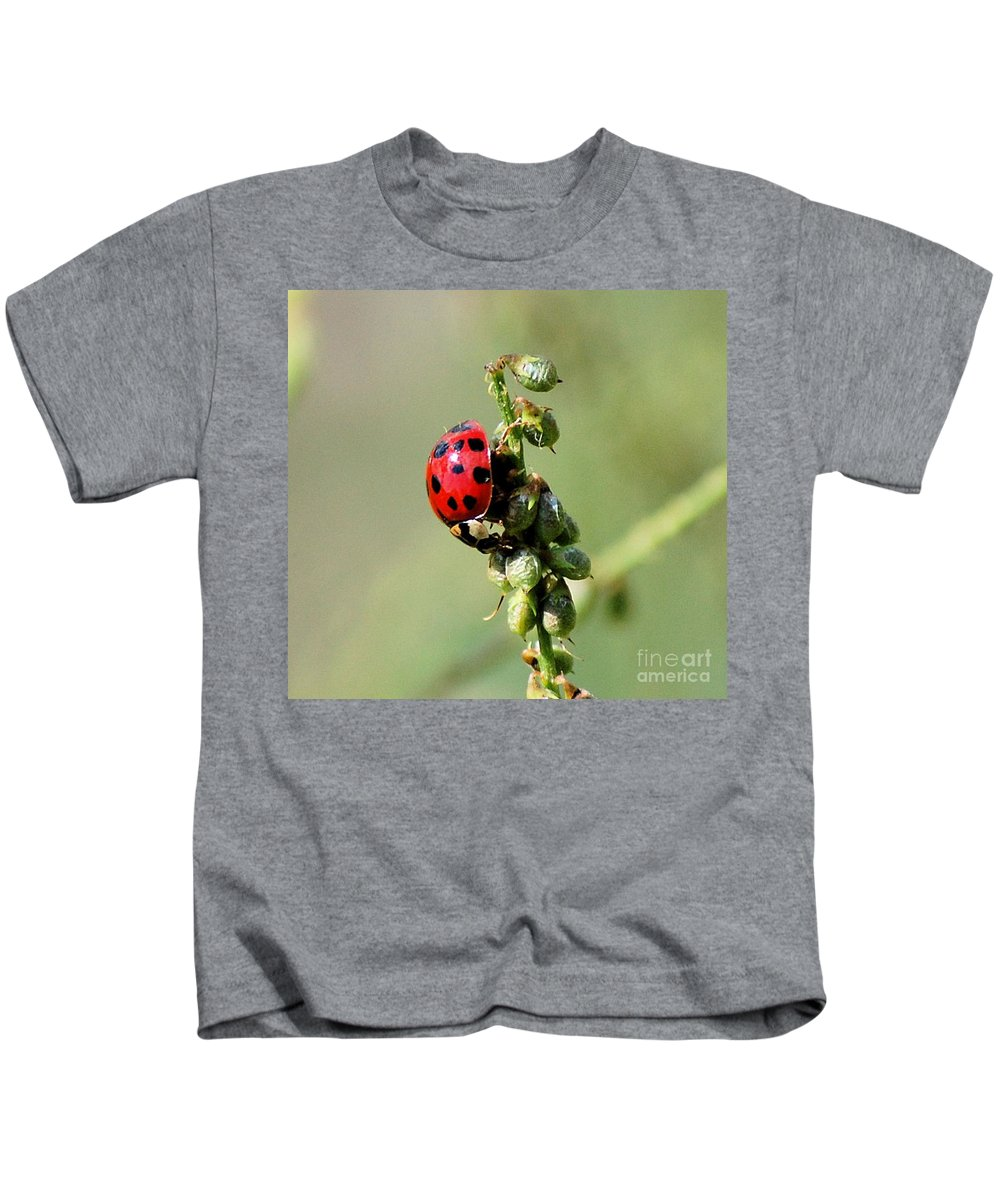Landscape Kids T-Shirt featuring the photograph Lady Beetle by David Lane
