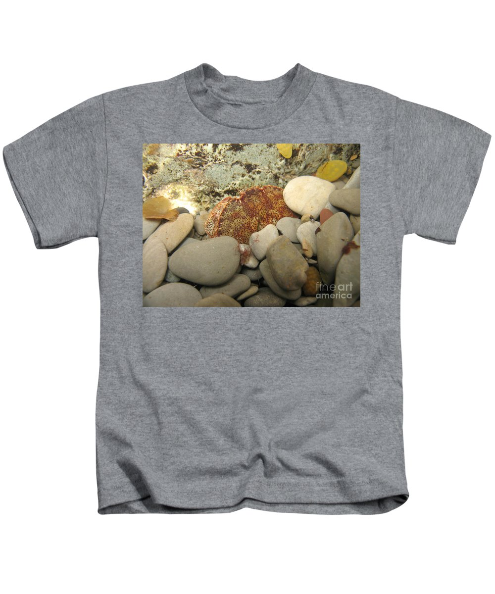Underwater Kids T-Shirt featuring the photograph Lady Crab by Ted Kinsman