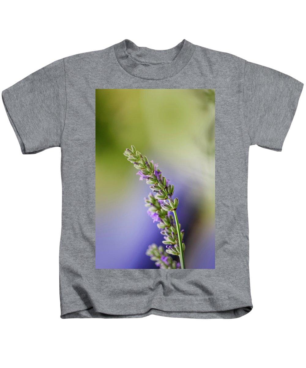 Lavender Kids T-Shirt featuring the photograph Lavender by Nailia Schwarz