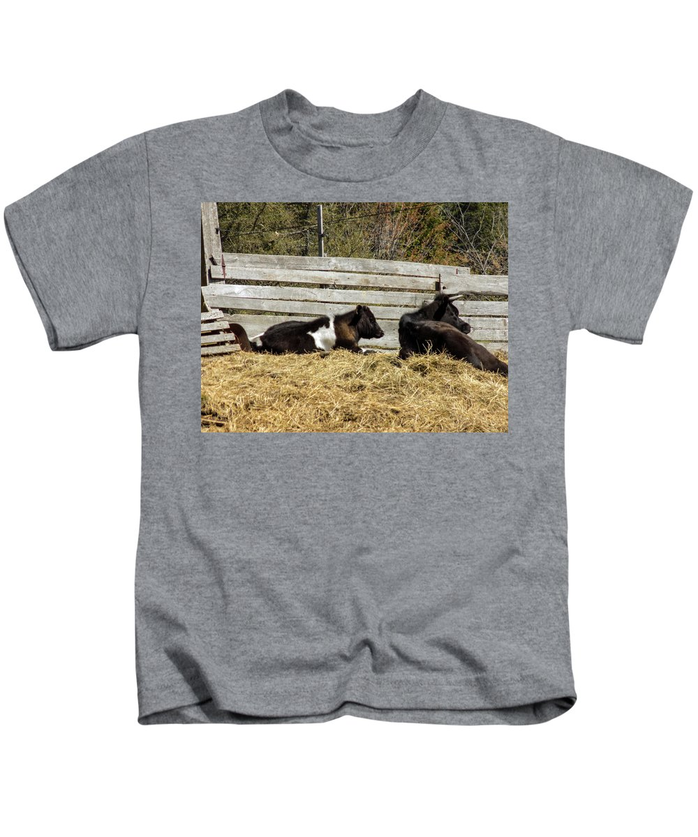 Farm Kids T-Shirt featuring the photograph Lazy Cows And Weathered Wood by William Tasker
