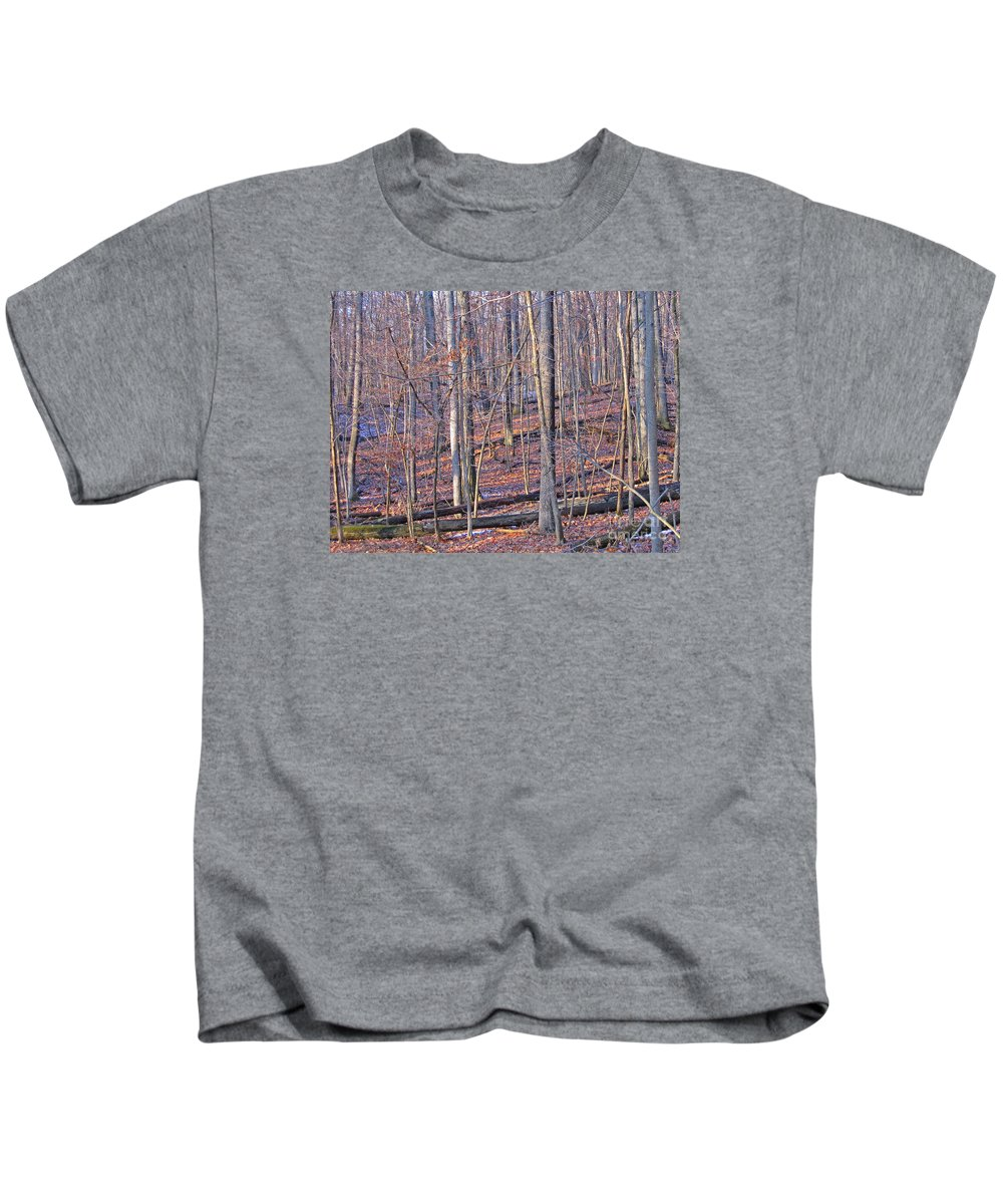 Woods Kids T-Shirt featuring the photograph Letting The Light In by Ann Horn