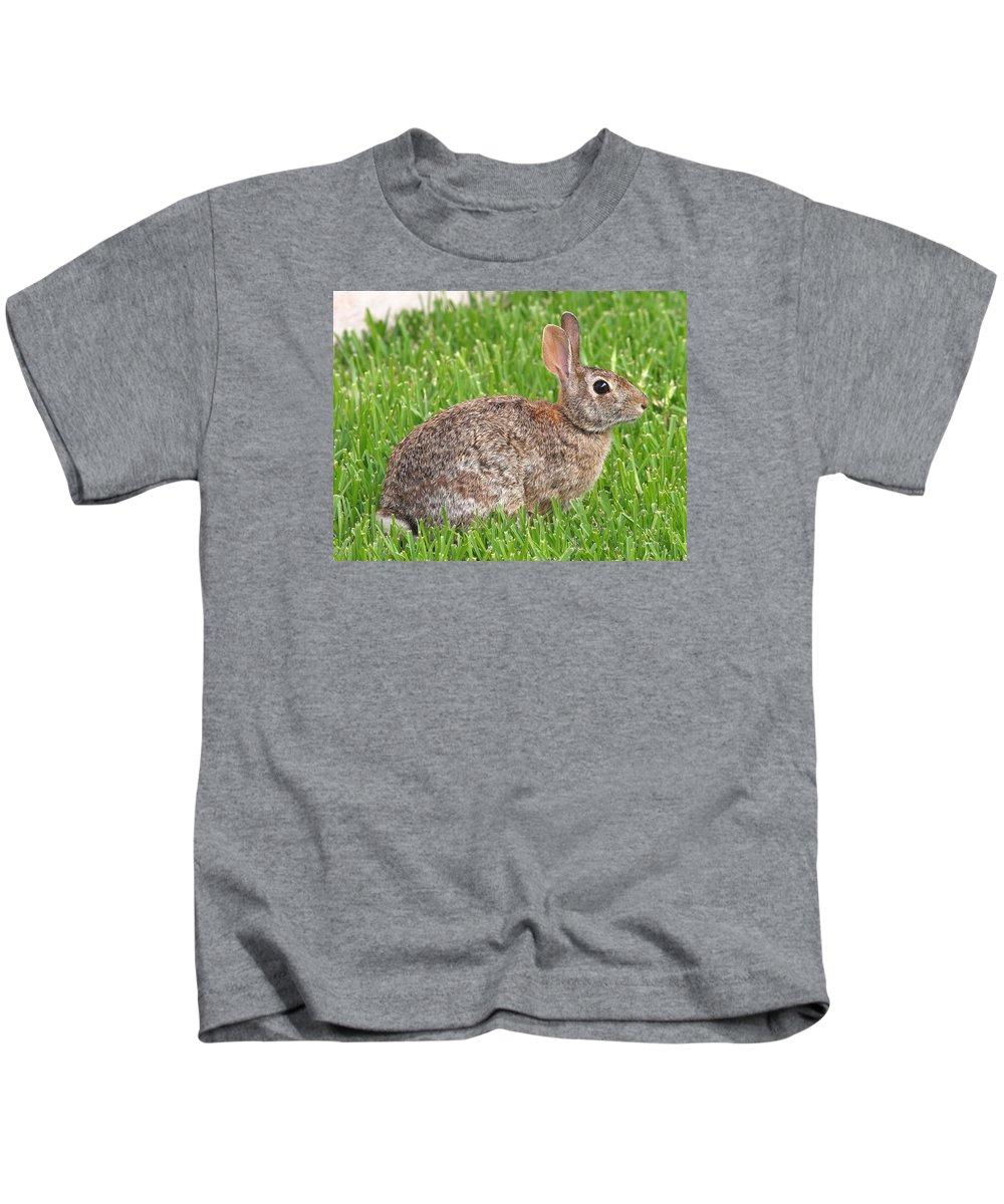 Sylvilagus Floridanus; Cottontail Rabbit; Eastern Cottontail Rabbit; Cottontail; Rabbit; Bunny; Garland Texas Kids T-Shirt featuring the photograph Look Who's Back by Kala King