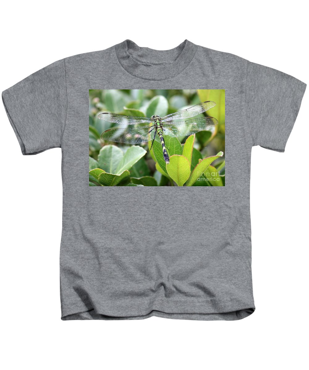 Dragonfly Kids T-Shirt featuring the photograph Lovely Wings by Carol Groenen