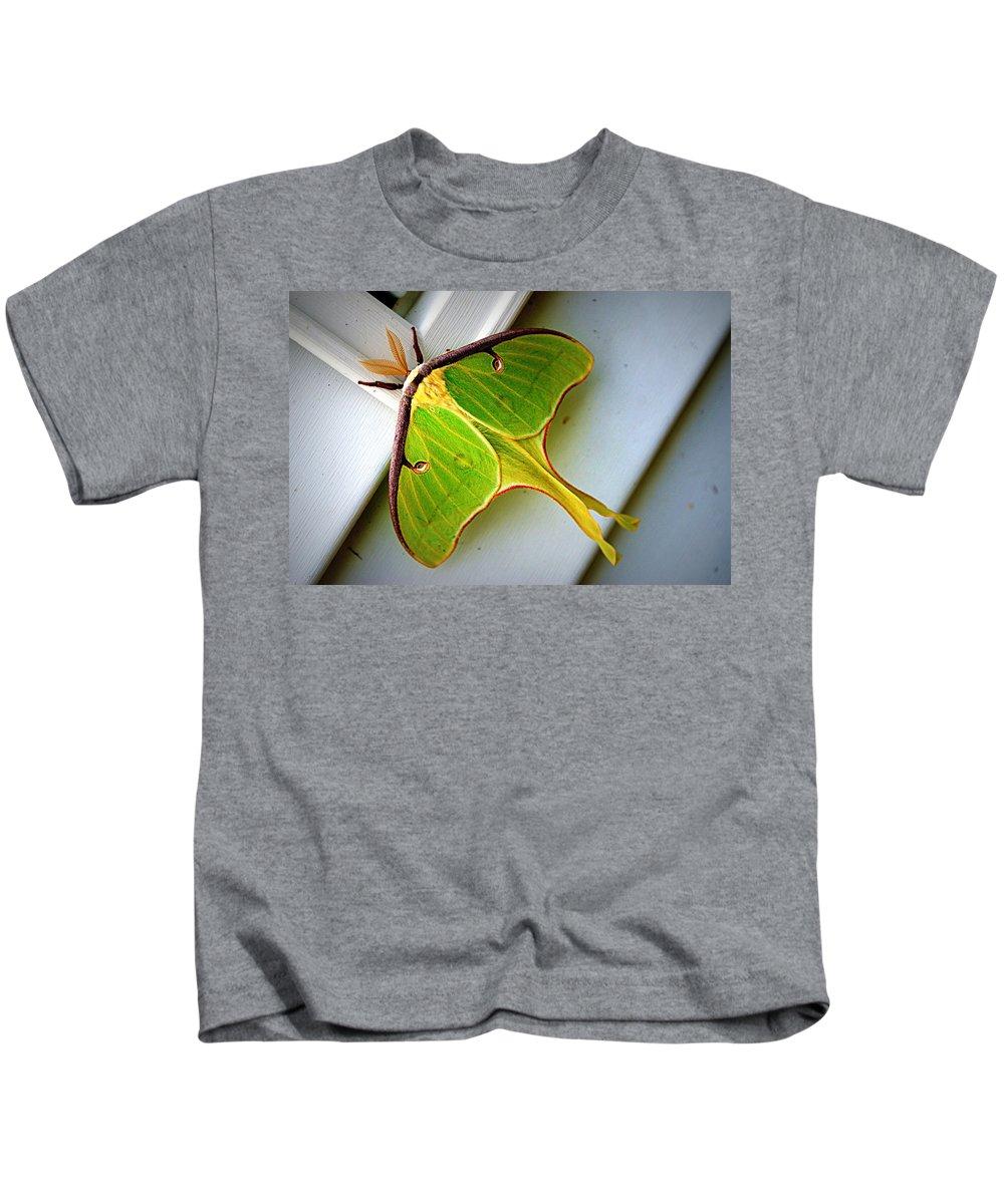 luna Moth Luna Kids T-Shirt featuring the photograph Luna Moth by Cricket Hackmann
