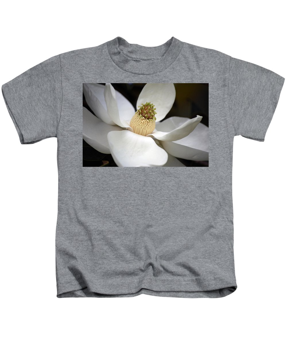 Flowers Kids T-Shirt featuring the photograph Magnolia 2 by Robert Meanor