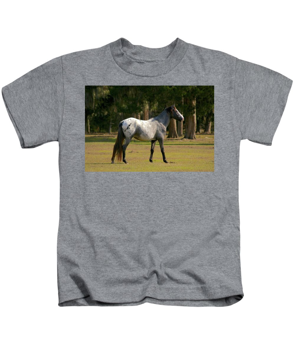 Cumberland Island Kids T-Shirt featuring the photograph Majestic Horse by Beverly Cummiskey