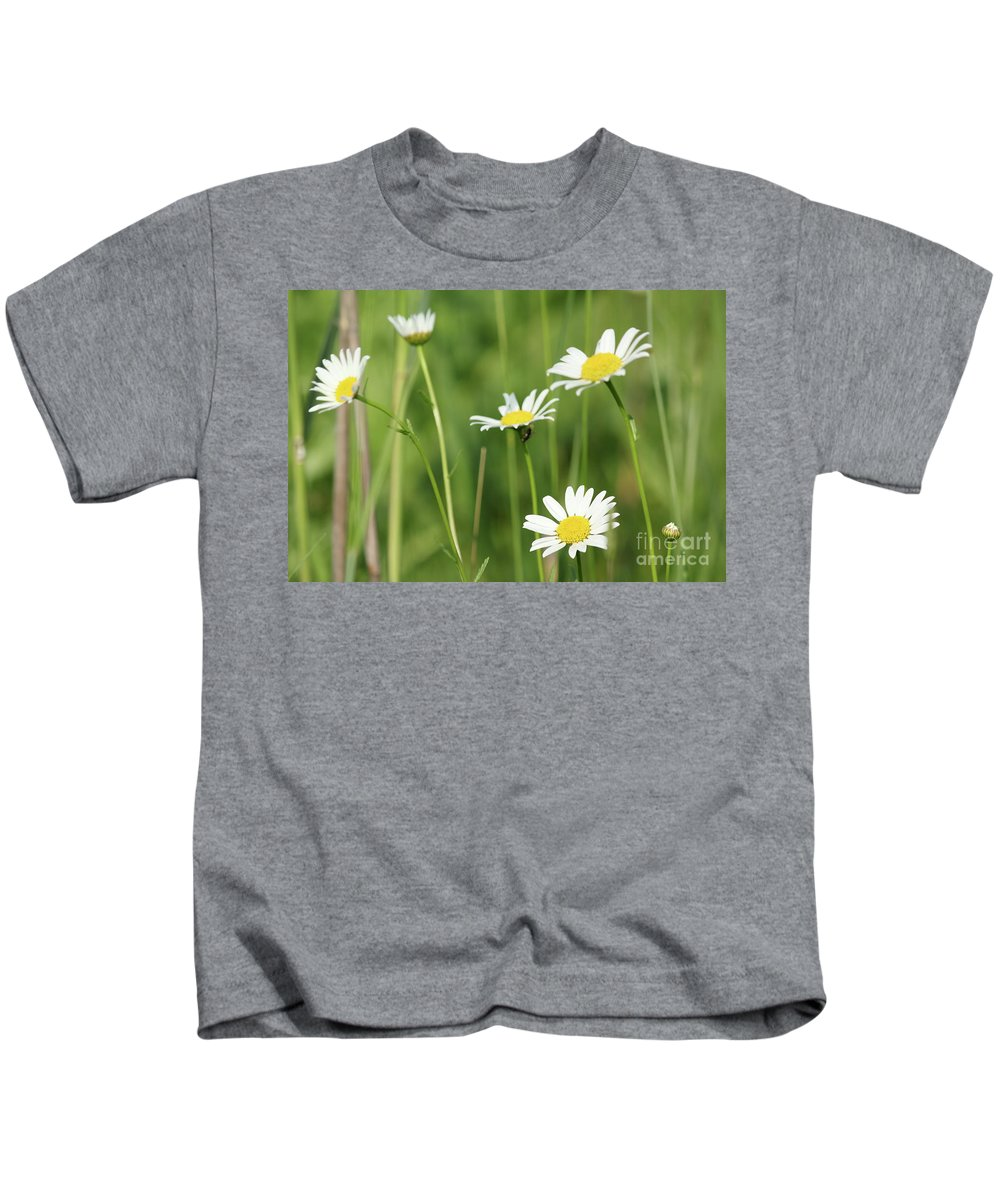 Camomile Kids T-Shirt featuring the photograph Meadow Detail White Wild Flowers by Goce Risteski