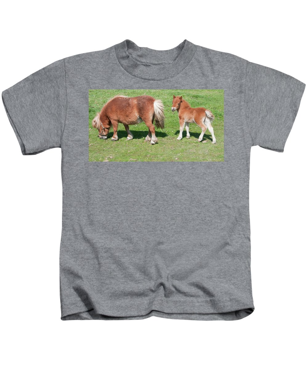 Pony Kids T-Shirt featuring the photograph Mom And Baby by David Arment
