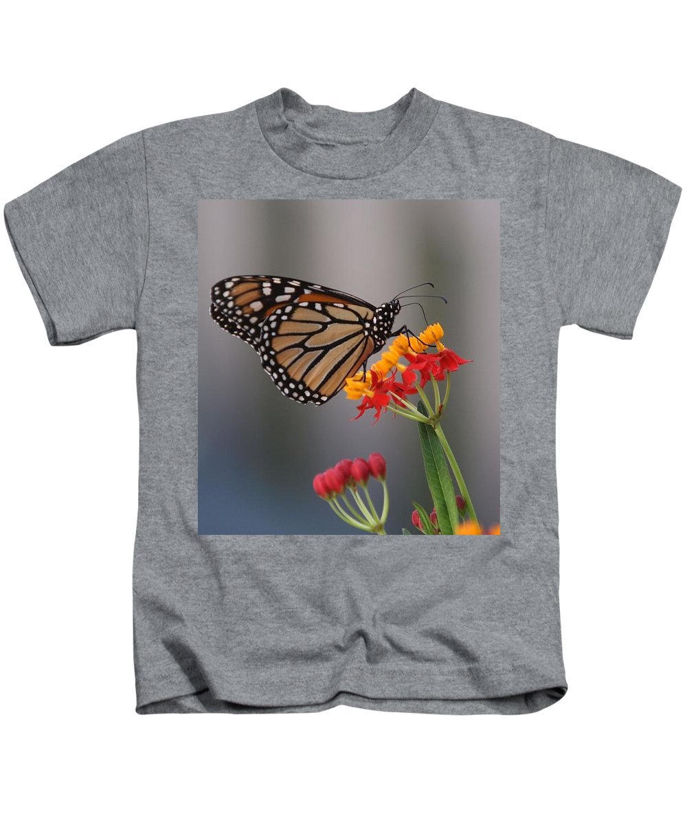 Butterfly Kids T-Shirt featuring the photograph Monarch Butterfly On Milkweed by Randy Matthews