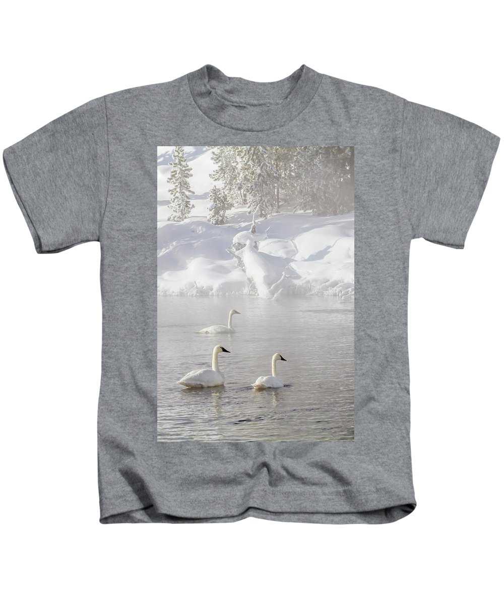 Yellowstone Kids T-Shirt featuring the photograph Morning Swan Trio 7845 by Karen Celella