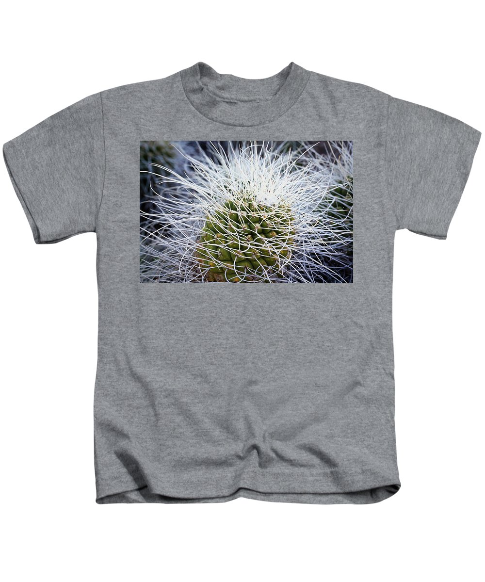 Cactus Kids T-Shirt featuring the photograph Mother Of Thousands by Phyllis Denton