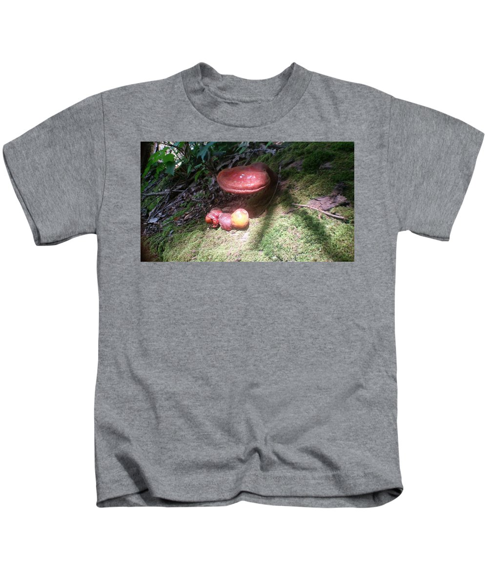 Landscape Kids T-Shirt featuring the photograph Mushrooms In Spotlight by Joe D Dry