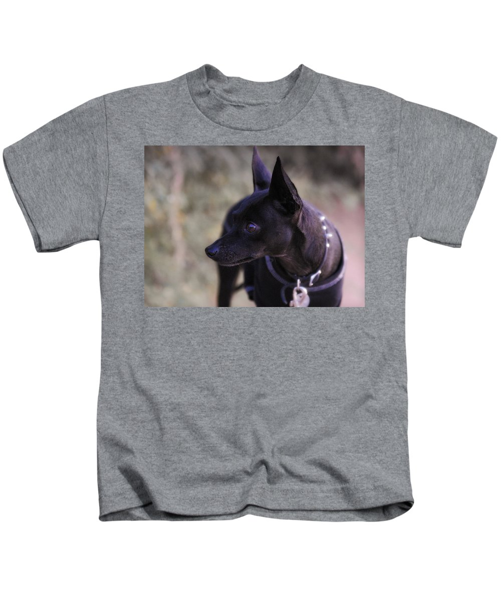Min-pin Kids T-Shirt featuring the photograph My Shadow by Saija Lehtonen