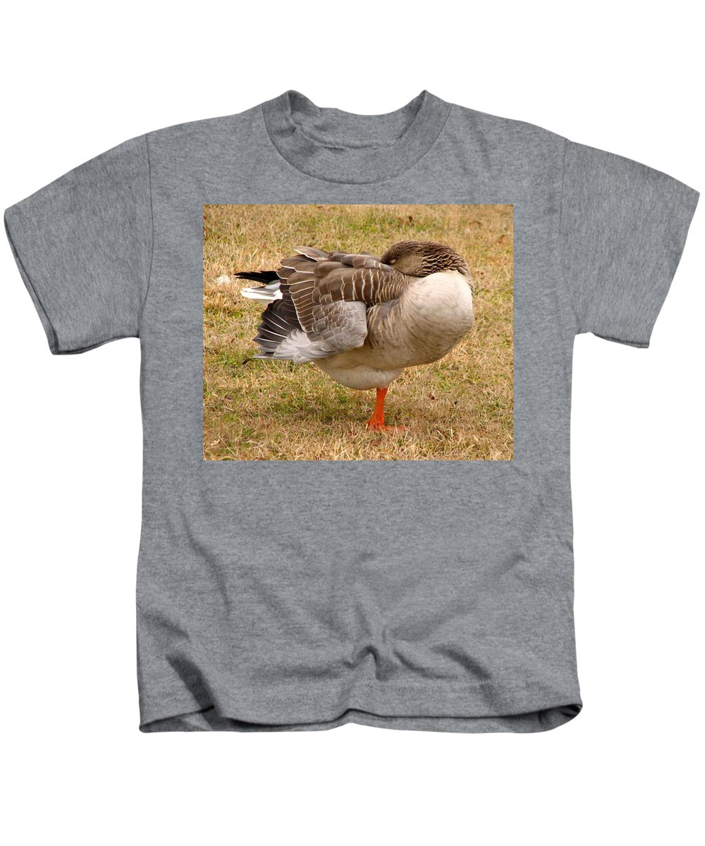 Goose Kids T-Shirt featuring the photograph Naptime by J M Farris Photography