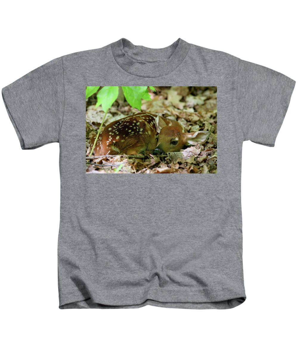 Deer Kids T-Shirt featuring the photograph Newborn White-tailed Deer Fawn by Bruce J Robinson