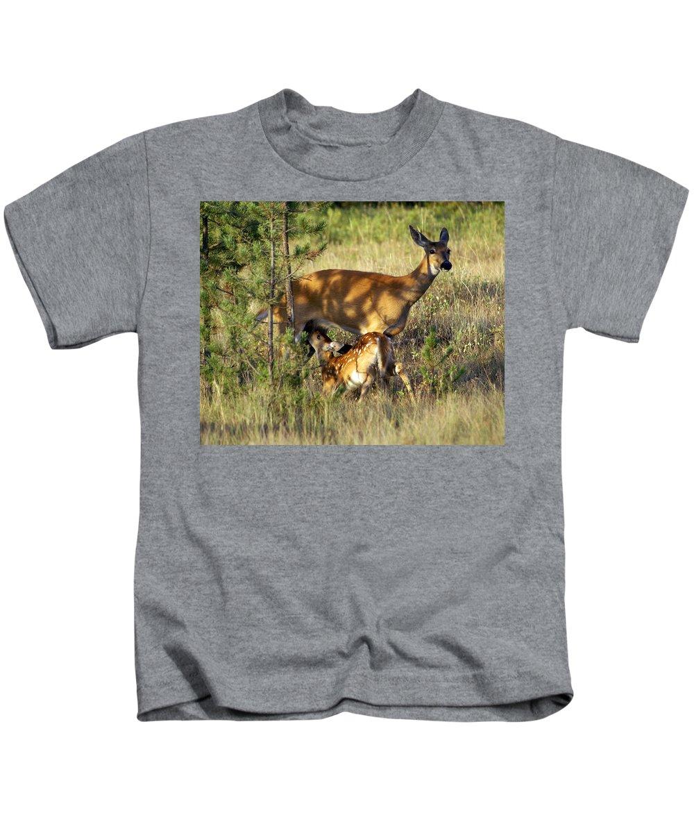 Deer Kids T-Shirt featuring the photograph Nursing Fawn by Marty Koch