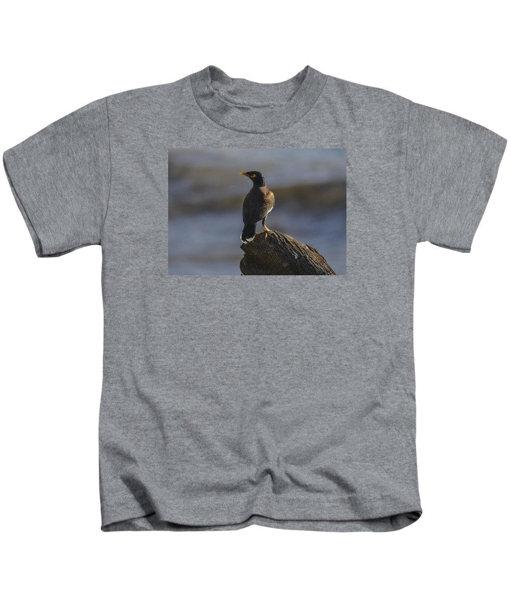 Bird Kids T-Shirt featuring the photograph On A Log by Karen Rose Warner