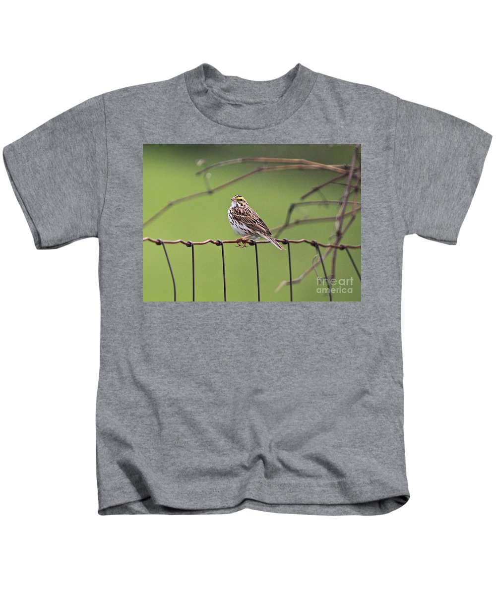 Related Tags: Birds Artwork Kids T-Shirt featuring the photograph On The Fence by Robert Pearson