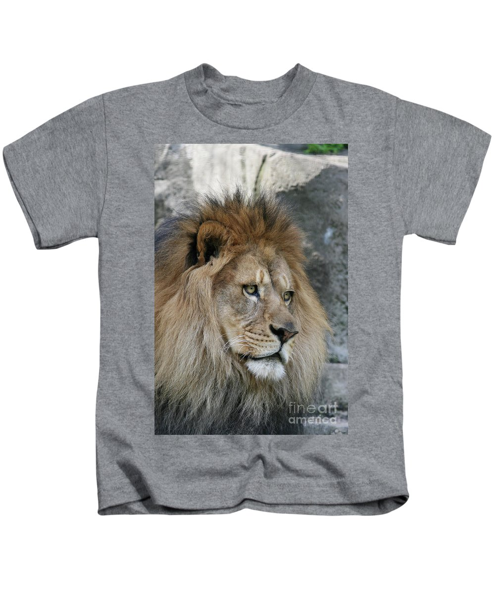 Lion Kids T-Shirt featuring the photograph Onyo #22 by Judy Whitton