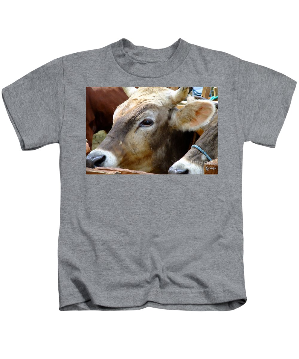Animals Kids T-Shirt featuring the photograph Performance Anxiety by RC DeWinter