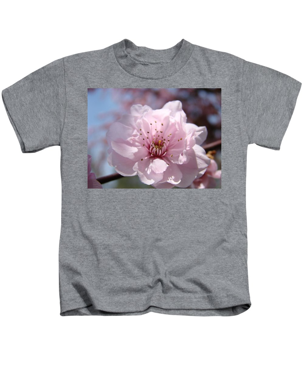 �blossoms Artwork� Kids T-Shirt featuring the photograph Pink Blossom Nature Art Prints 34 Tree Blossoms Spring Nature Art by Baslee Troutman