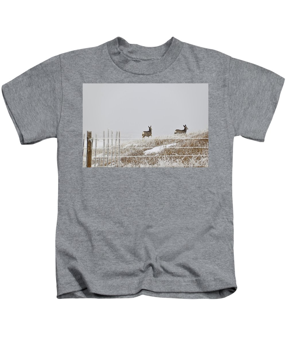 Deer Kids T-Shirt featuring the photograph Preparation by Kellie Prowse