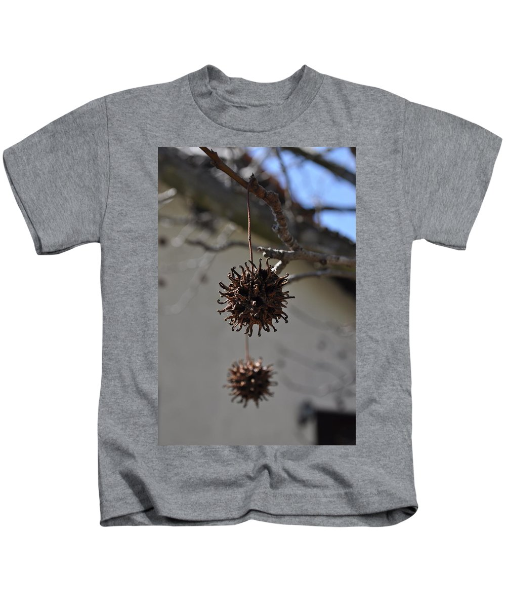 Pod Kids T-Shirt featuring the photograph Prickly Liquidamber Pod by Bridgette Gomes