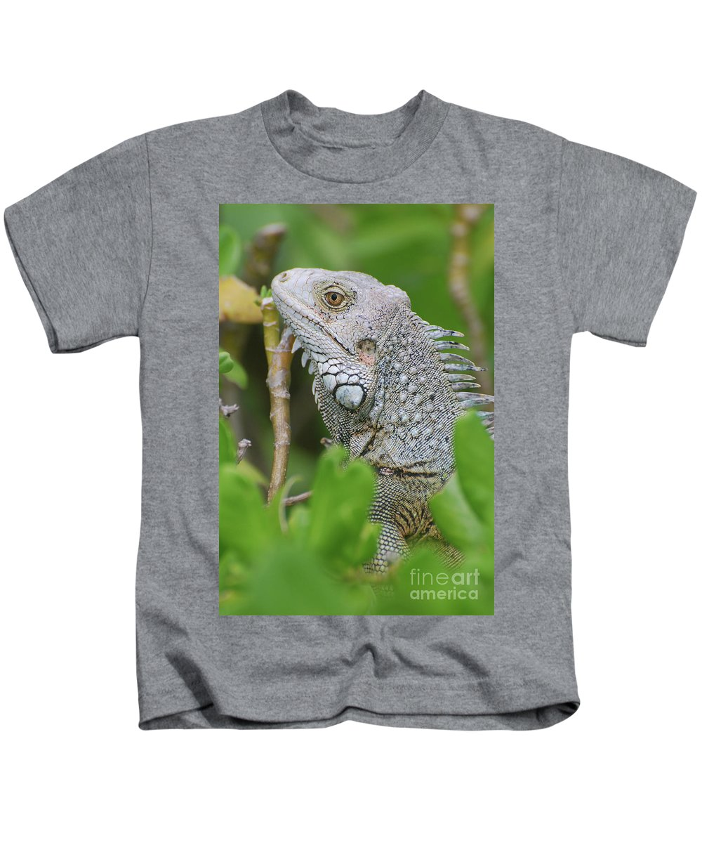 Iguana Kids T-Shirt featuring the photograph Profile Of A Gray Iguana In The Top Of A Bush by DejaVu Designs