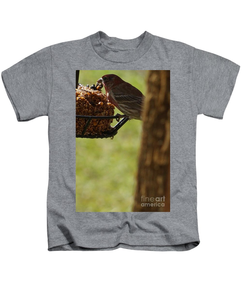 Bird Kids T-Shirt featuring the photograph Profile Of A Male House Finch by Maxine Billings
