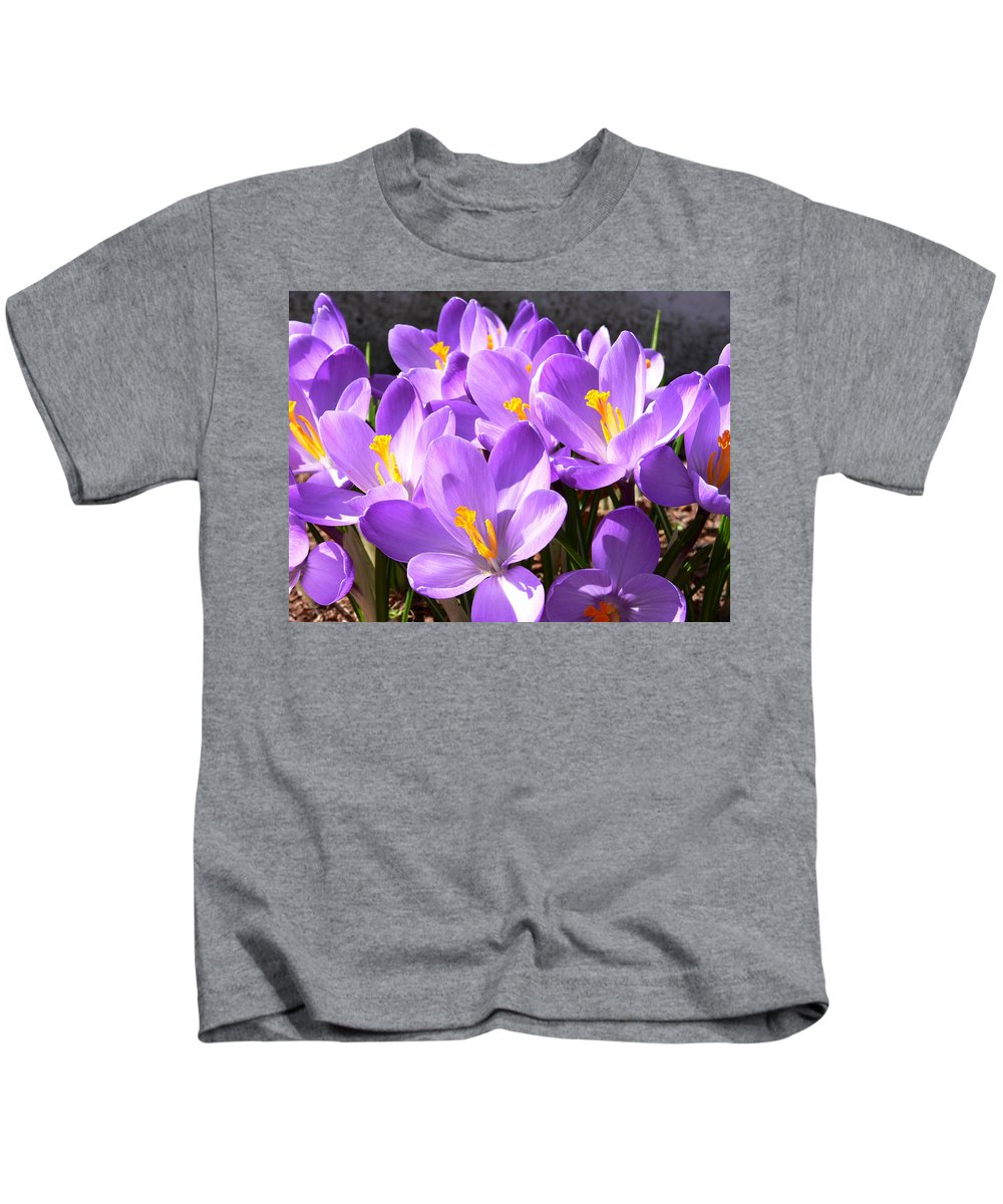 New England Photos Kids T-Shirt featuring the photograph Purple Morning by Nancie DeMellia
