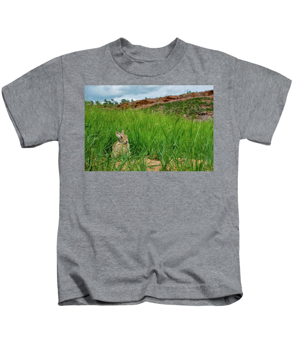 Animal Kids T-Shirt featuring the photograph Rabbit In The Grass by Rob Lantz