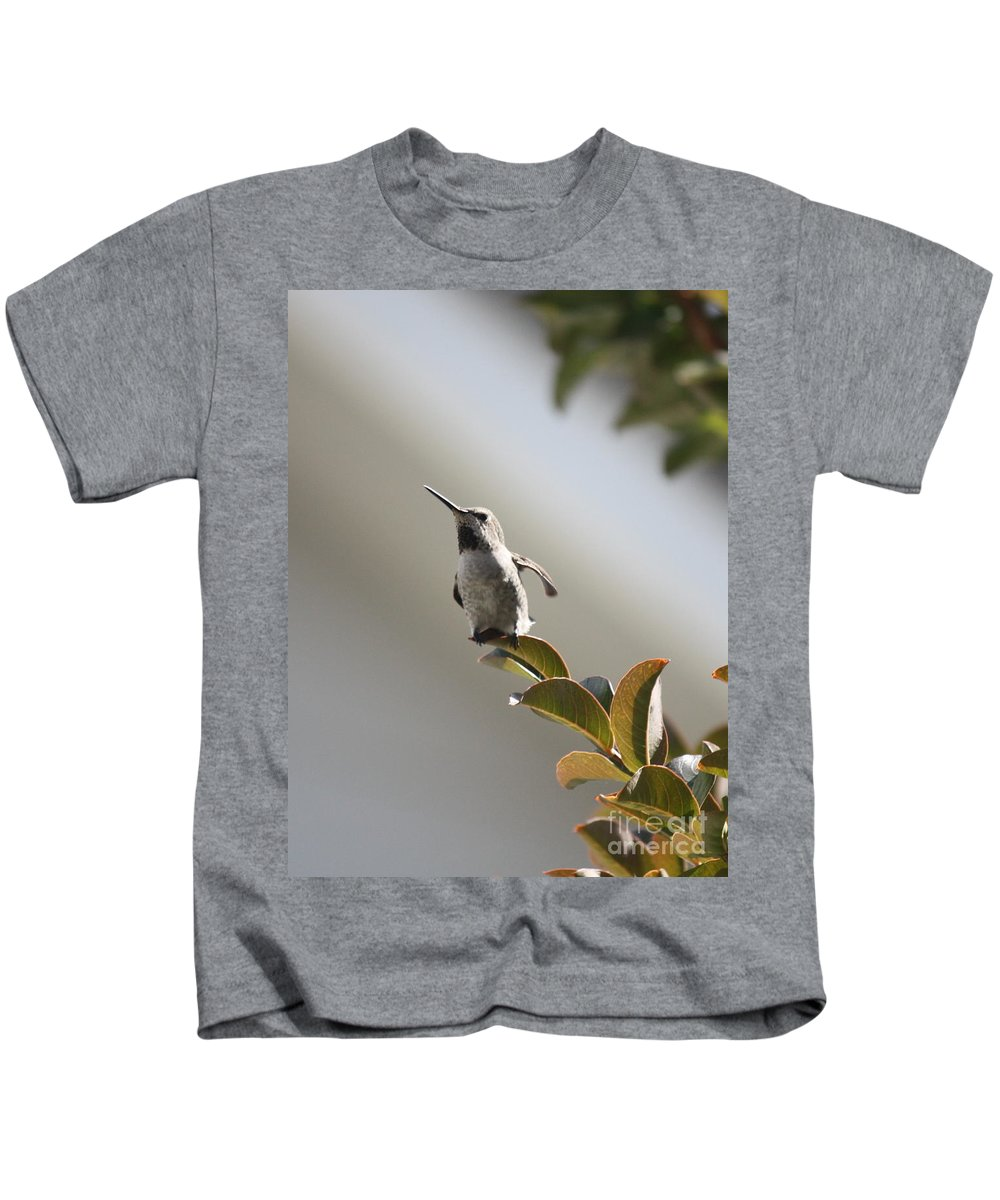 Hummingbird Kids T-Shirt featuring the photograph Ready For Takeoff by Carol Groenen