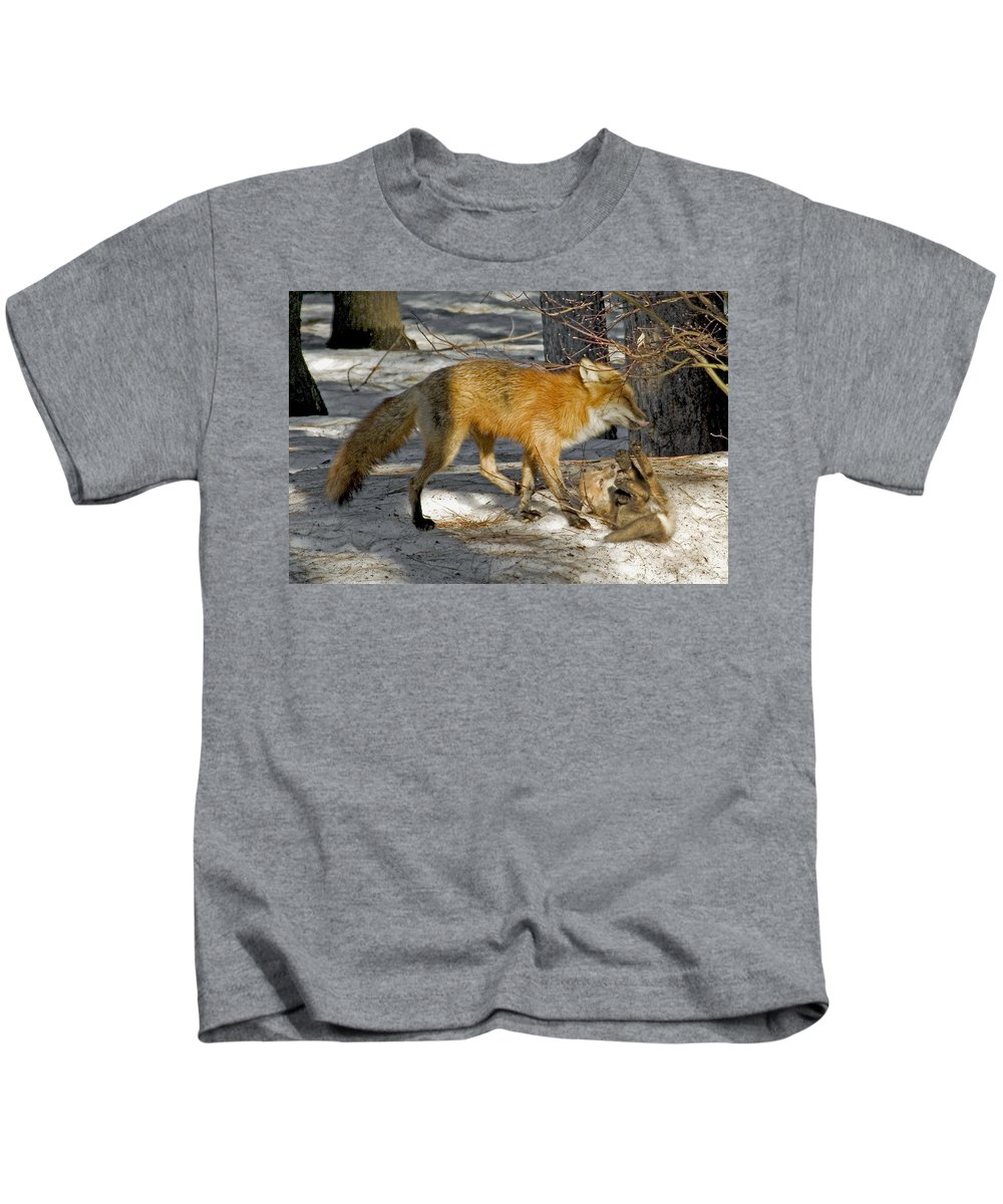 Red Fox Kids T-Shirt featuring the photograph Red Fox Mommy And The Cutest Puppy by Asbed Iskedjian