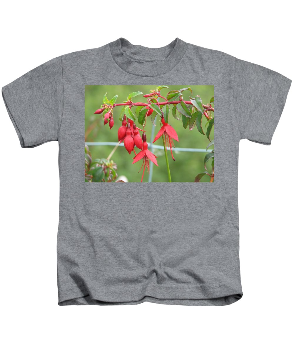 Fresia Kids T-Shirt featuring the photograph Red Fresia by Kelly Mezzapelle