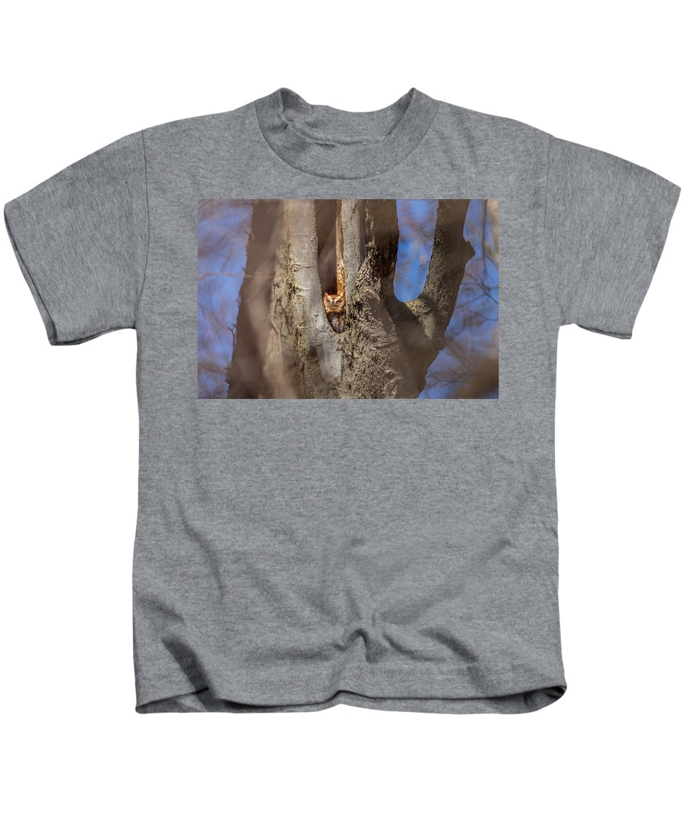 Eastern Screech Owl Kids T-Shirt featuring the photograph Red Morph 2 by Rodney Ervin