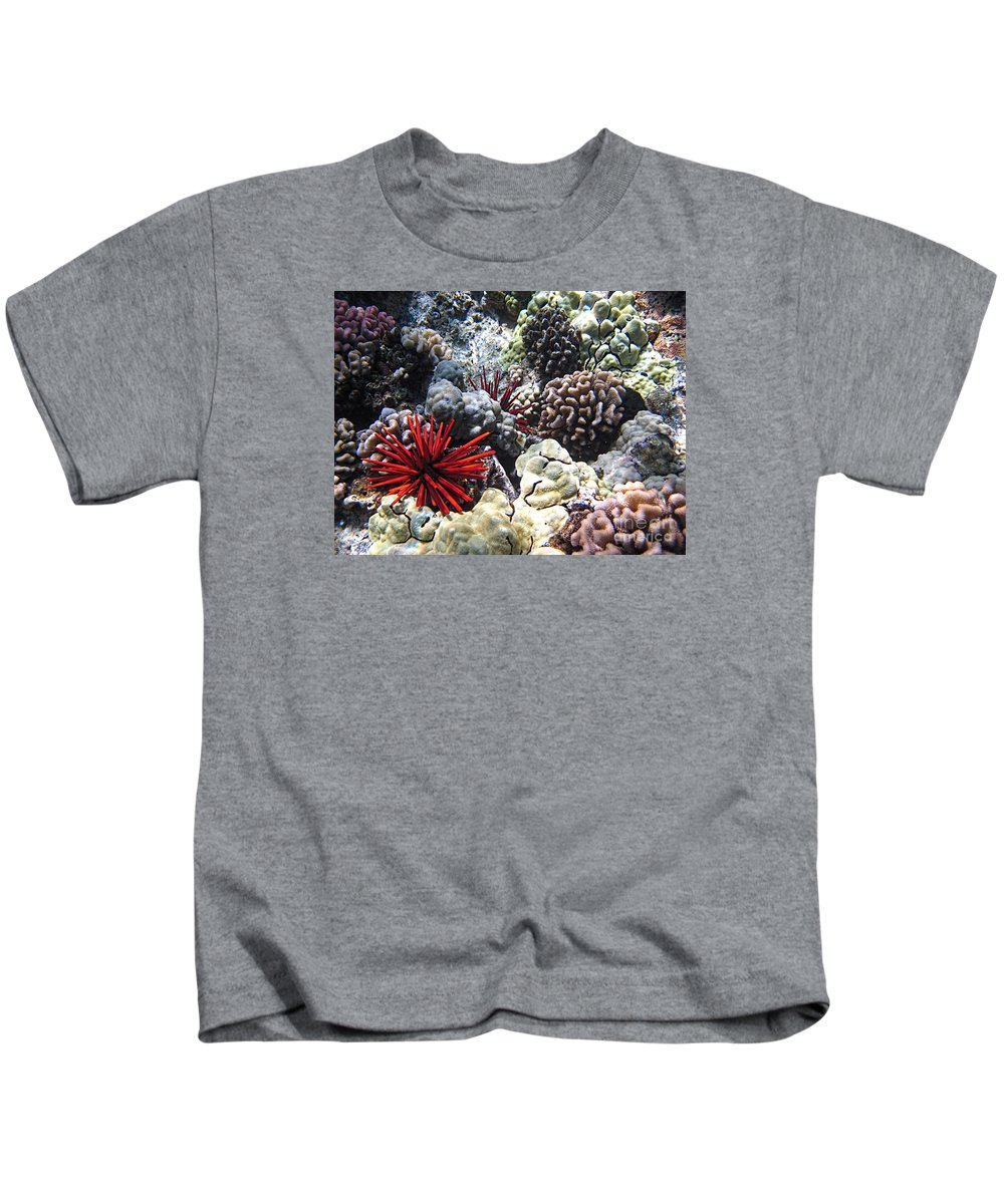 Red Slate Pencil Urchin Kids T-Shirt featuring the photograph Red Slate Pencil Urchin by Keith Ducker