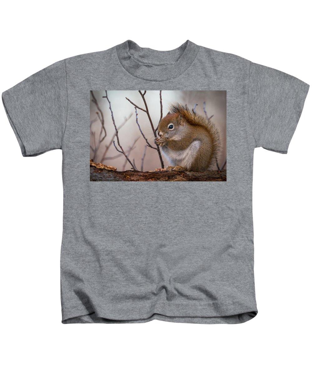 Red Squirrel - Sciurus Vulgaris Kids T-Shirt featuring the photograph Red Squirrel - Sciurus Vulgaris by Alex Papp