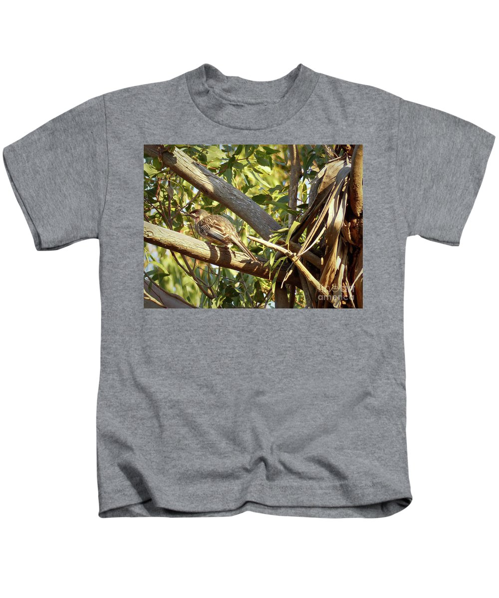 Red Wattlebird Australia Kids T-Shirt featuring the photograph Red Wattlebird Australia by Teresa A and Preston S Cole Photography