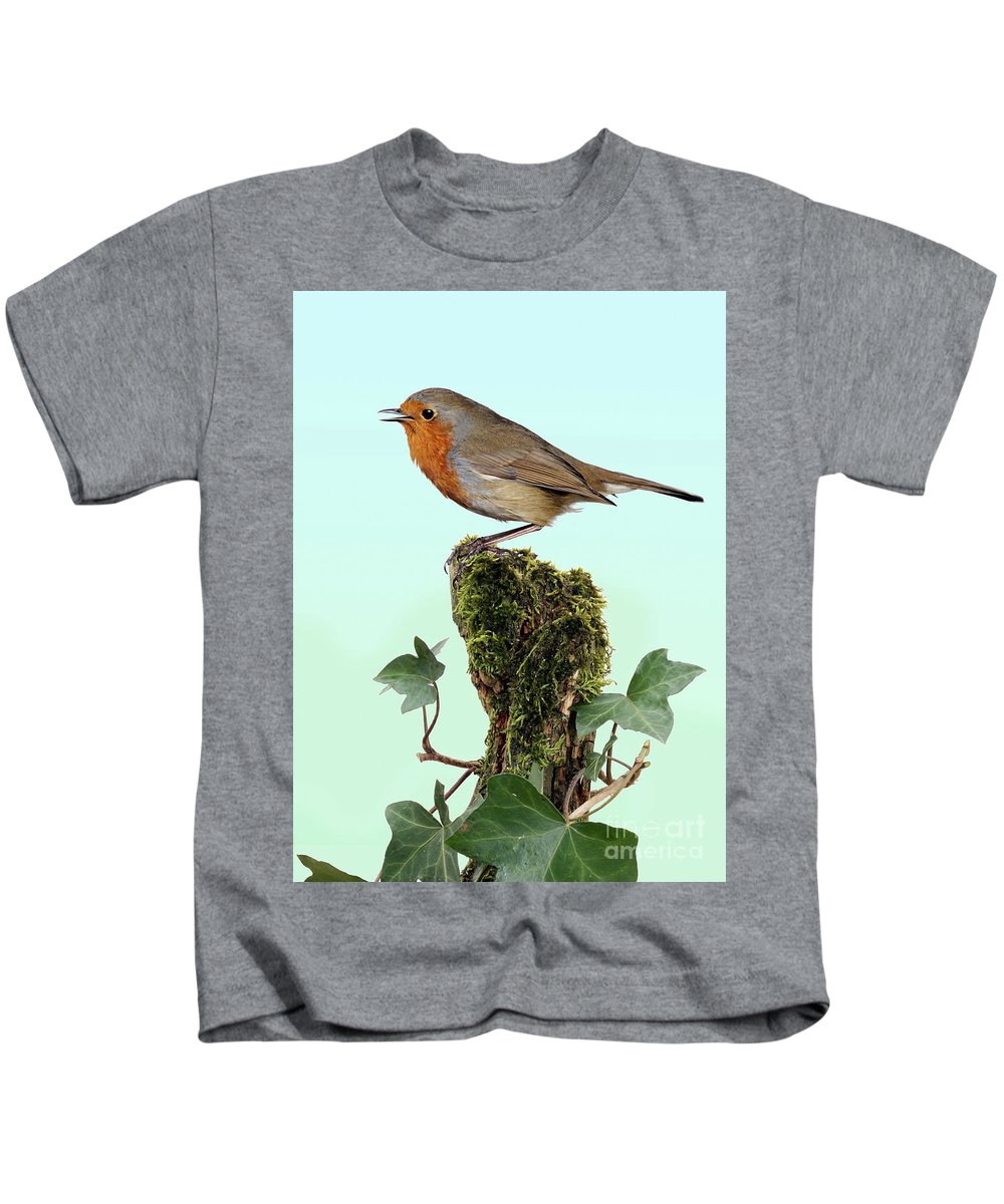 Erithacus Rubecula Kids T-Shirt featuring the photograph Robin Singing On Ivy-covered Stump by Warren Photographic