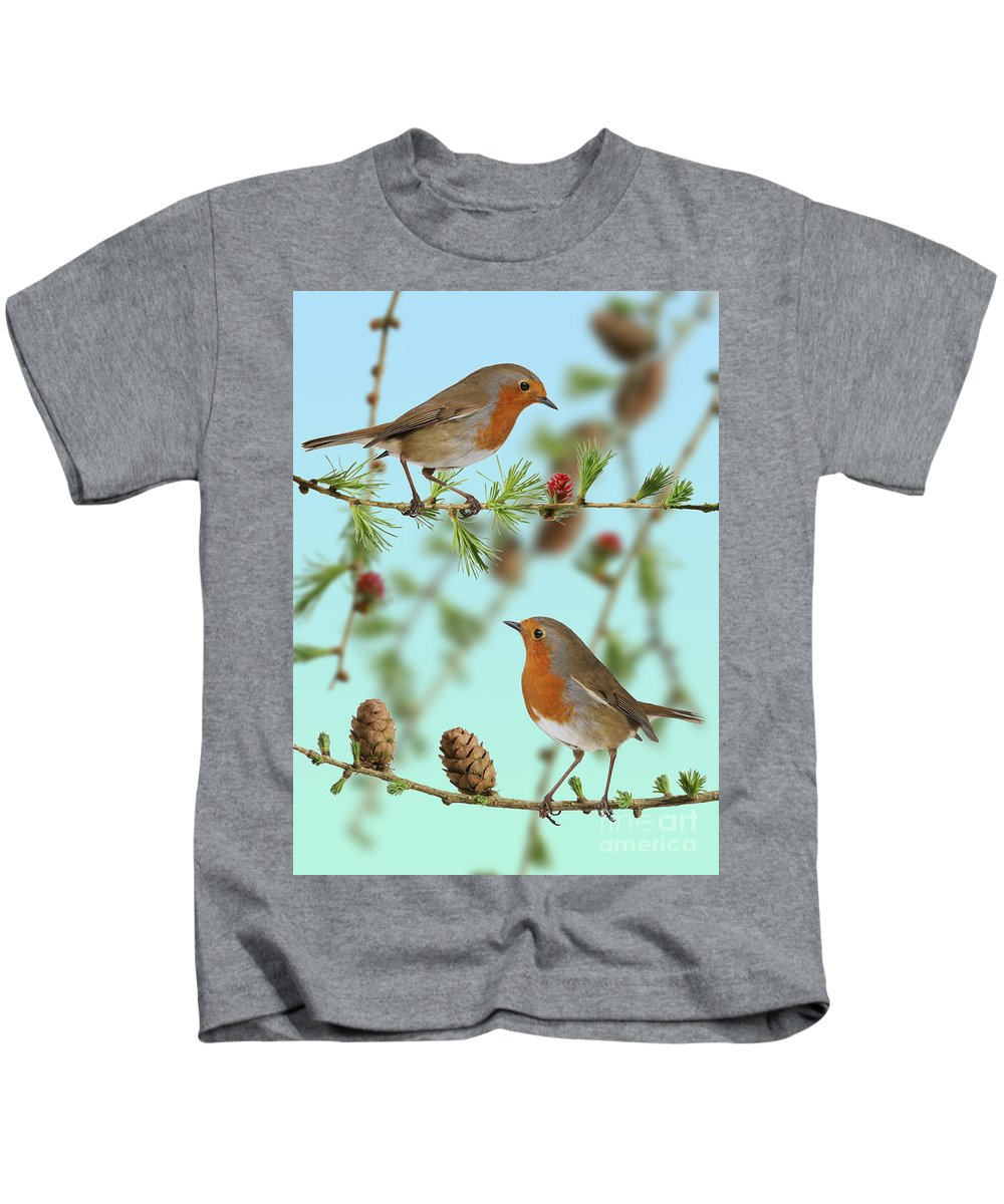 European Larch Kids T-Shirt featuring the photograph Robins On Larch by Warren Photographic