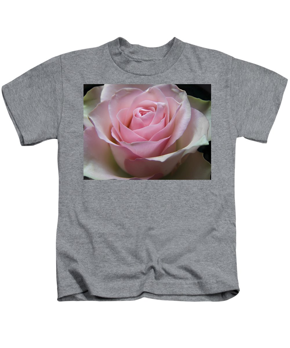 Rose Kids T-Shirt featuring the photograph Rose by Daniel Csoka