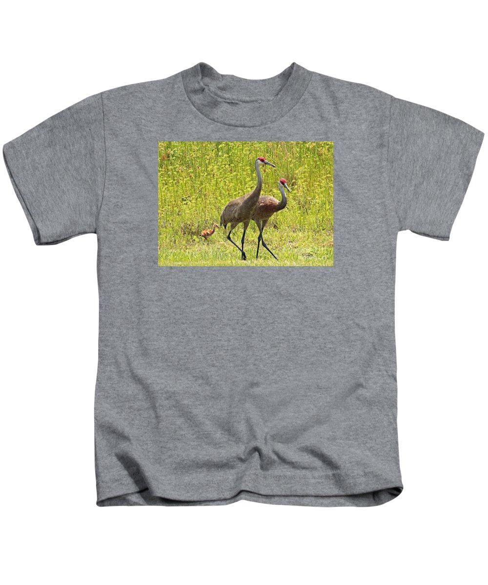 Sandhill Cranes Kids T-Shirt featuring the photograph Sandhill Crane Family by Carol Groenen