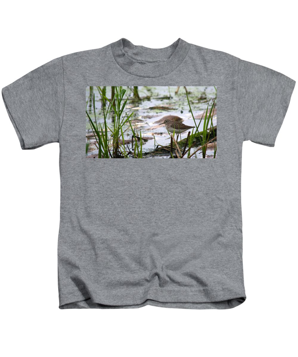 Solitary Sandpiper Kids T-Shirt featuring the photograph Sandpiper Perched by Linda Kerkau