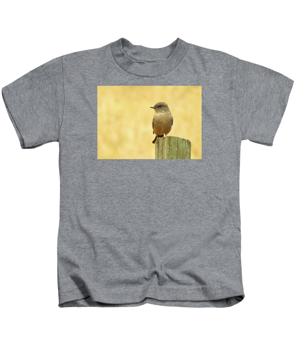 Bird Kids T-Shirt featuring the photograph Say's Pheobe by Jodi Forster