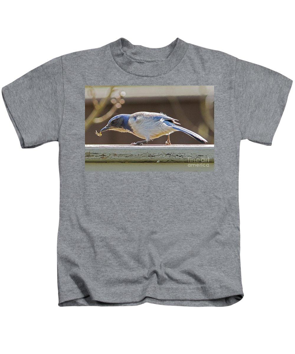 Scrub Jay Kids T-Shirt featuring the photograph Scrub One Yellowjacket by Marland Howard