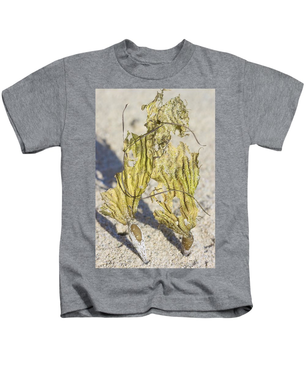 Seaweed Kids T-Shirt featuring the photograph Seaweed Sisters by Lissa Liggett