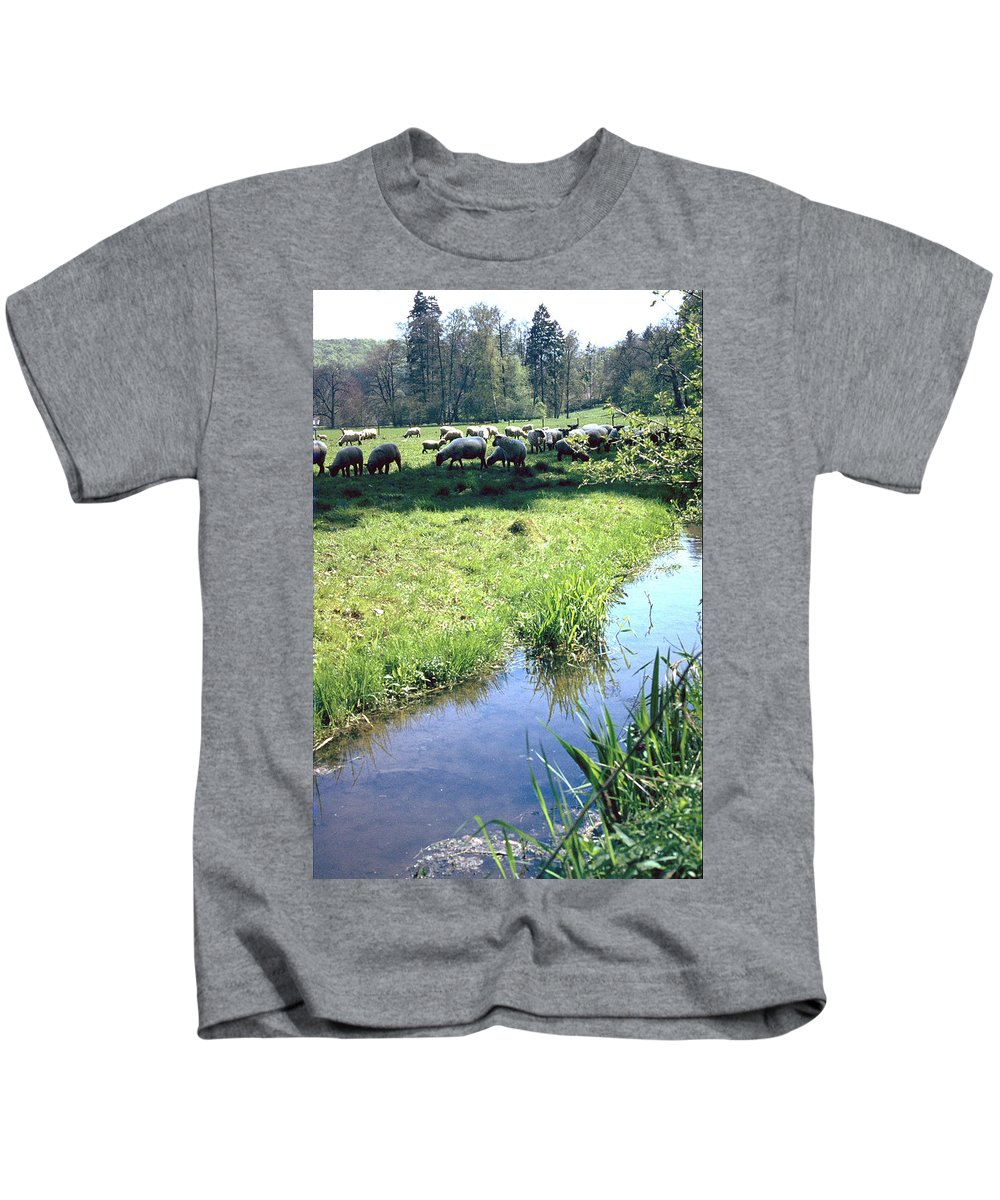 Sheep Kids T-Shirt featuring the photograph Sheep by Flavia Westerwelle