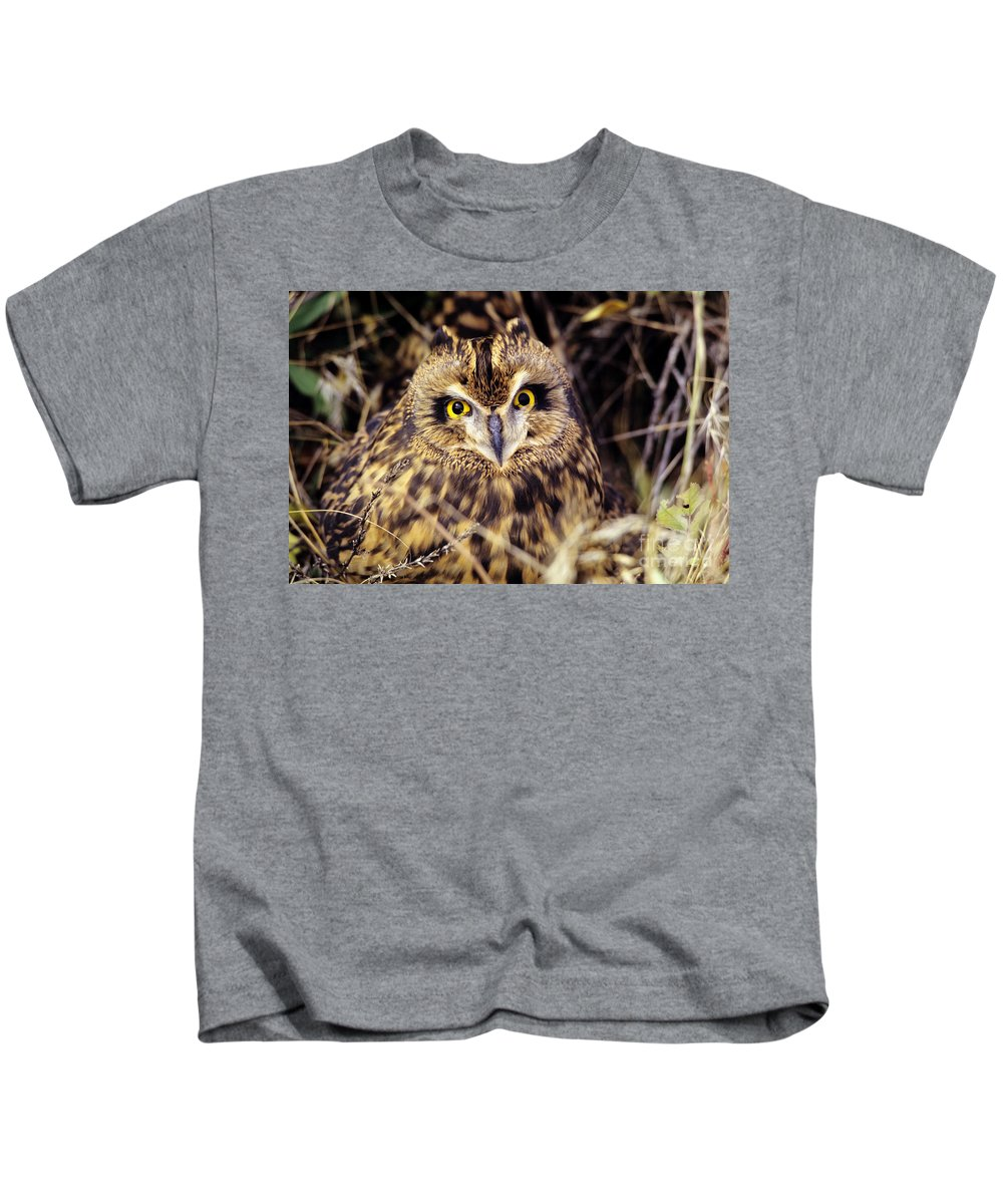 Animal Art Kids T-Shirt featuring the photograph Short Eared Owl by John Hyde - Printscapes