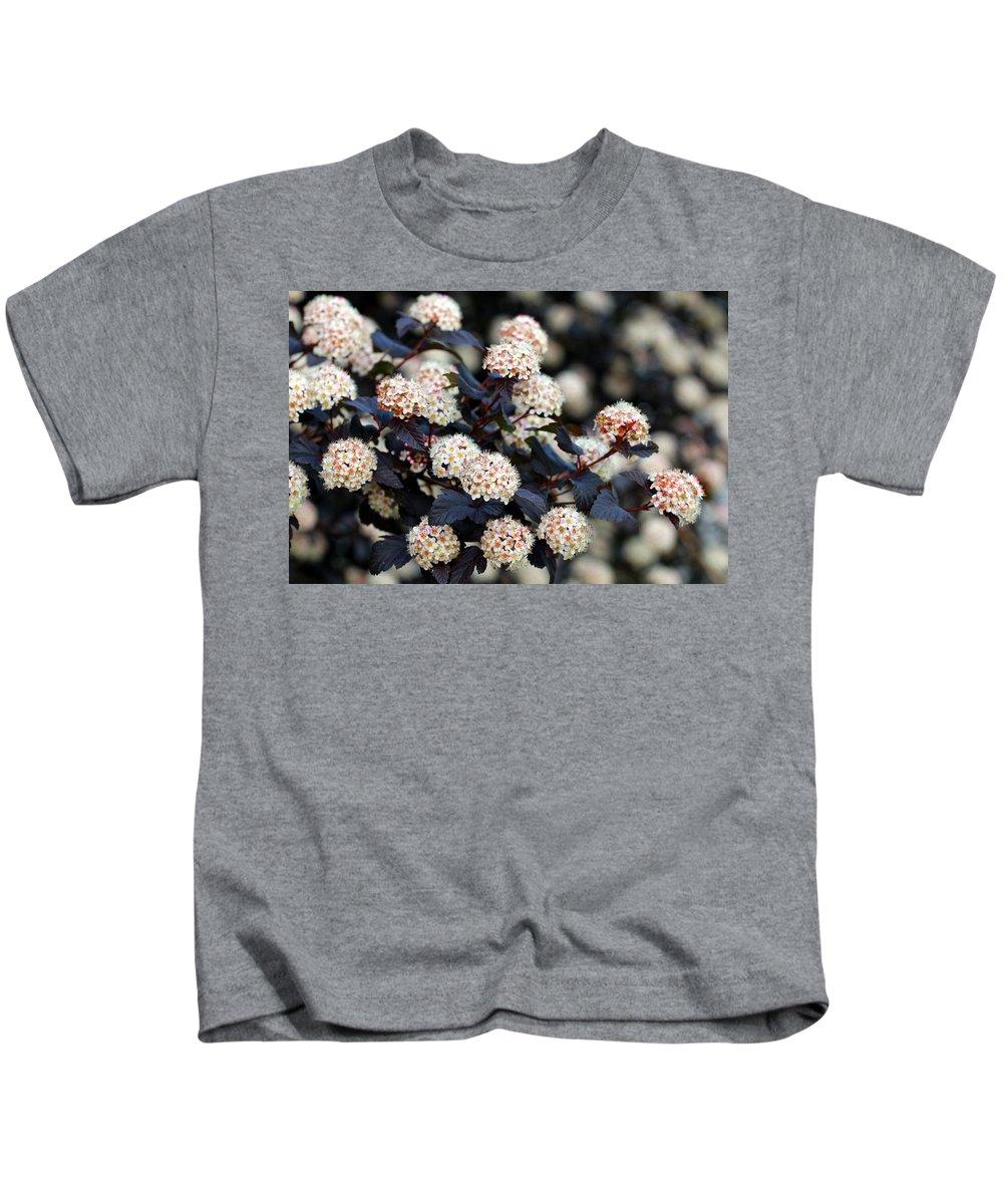 Summer Wine Ninebark Blossom Kids T-Shirt featuring the photograph Summer Wine Ninebark Blossom by Happy Home Artistry
