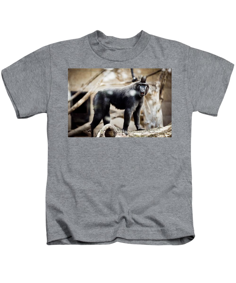 Macaque Kids T-Shirt featuring the photograph Single Macaque Monkey Standing by Arletta Cwalina